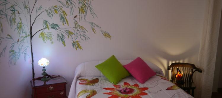 habitación mimosa