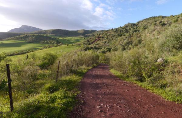 Camino Bermejales