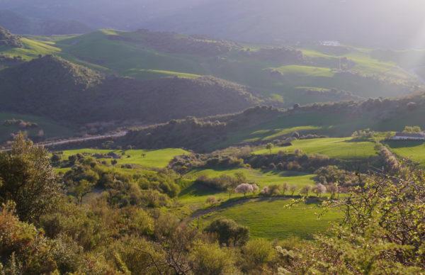 Sendero Montecorto-Gastón